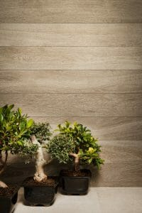 8x48 Palmi Tan Natural Wood Look Tile With White Grains